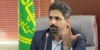مبارزه با سن غلات در اراضی استان سمنان در سطح ۱۳۲۱۵ هکتار؛ مبارزه با سن پوره نیز آغاز شده است
