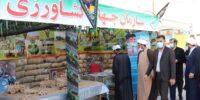 جهادگران استان سمنان از پارک موزه دفاع مقدس بازدید کردند.